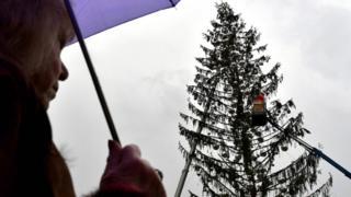 pohon Natal di Roma, Italia.