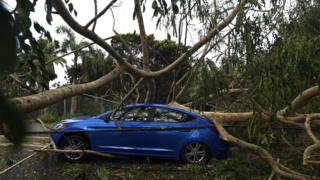 A vehicle is crushed under the weight of a fallen tree in the aftermath of Hurricane Irma in San Juan, Puerto Rico, 7 September 2017