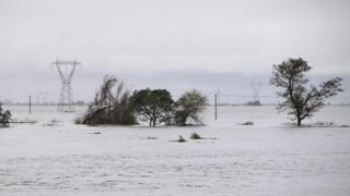 Electricity pylons and trees emerge from the flooded landscape