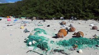 Playa de la isla Henderson