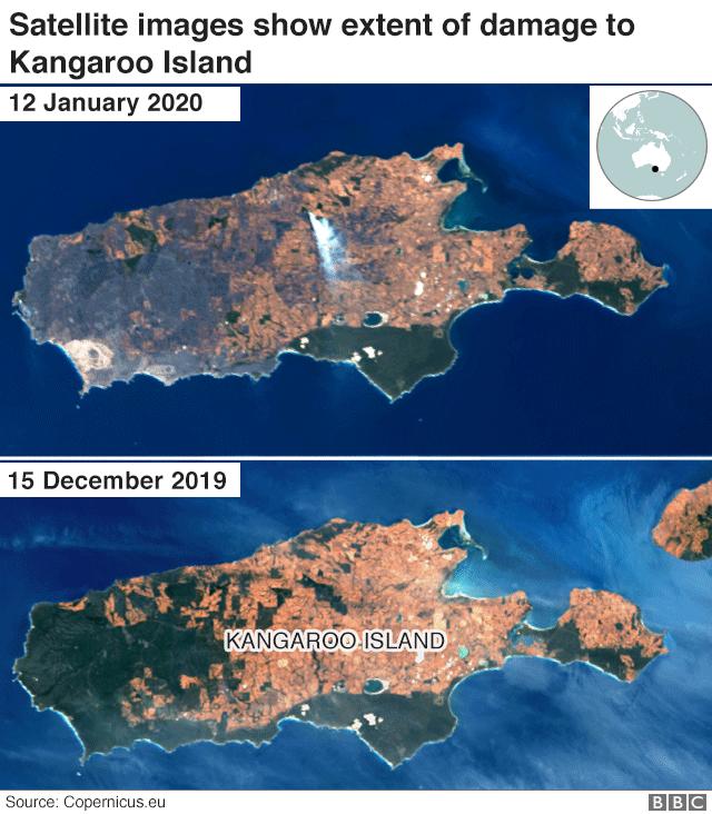 Satellite image showing fire destruction on Kangaroo Island