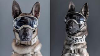 Ecko (izq) y Evil con sus gafas protectoras.