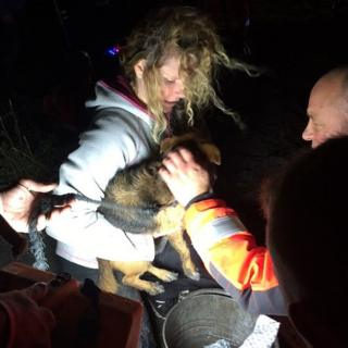 Dog rescued by fire crews