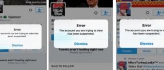 Alt-Right hareketin uyelerinin twitter hesaplari donduruldu