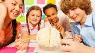 مغز نوجوانان به اندازه مغز یک انسان بالغ رشد نکرده