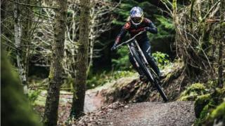 Dyfi Bike Park