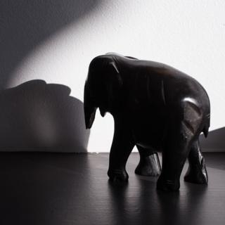 in_pictures Elephant sculpture