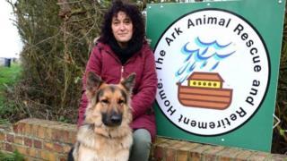Ark Rescue Centre Facebook