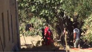 Tree search in Kos