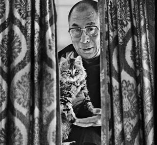 Dalai Lama with his pet cat