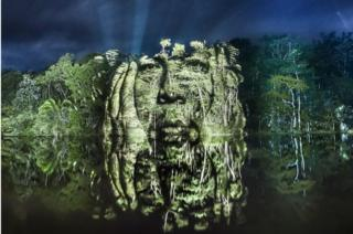 A man's face is projected on to the Brazilian rainforest canopy