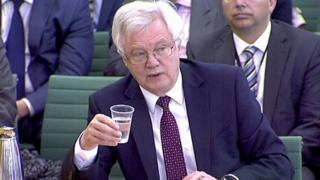 Brexit: David Davis expects MPs to back customs union exit