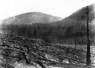 Foto do incêndio de 1910
