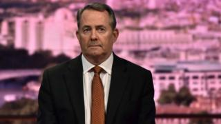 Liam Fox in the Andrew Marr Show