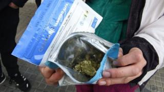 Flores de cannabis envasadas para la venta en Uruguay.