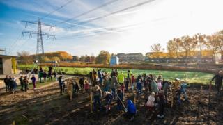 environment Children planting trees