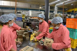 Indian workers pack ice cream cones at a production facility at Vadilal Industries Ltd. at Pundhara village, around 60 kms from Ahmedabad on May 28, 2013
