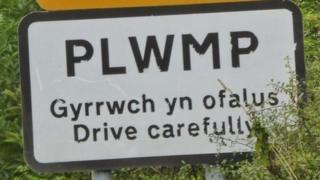 Arwydd Plwmp
