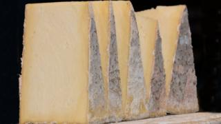 Learn cheese making australia