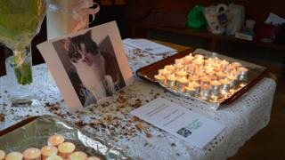 Altar to victims of the cat killer