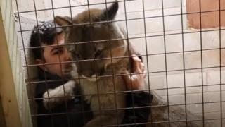 Reece Oliver and puma