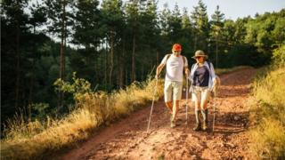Two older people going for a walking in a forest