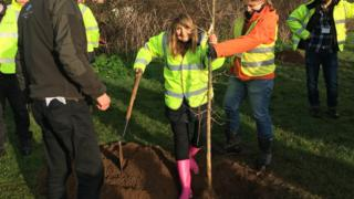 First trees in 'Forest for Cornwall' planted