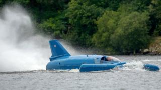 Restored Bluebird