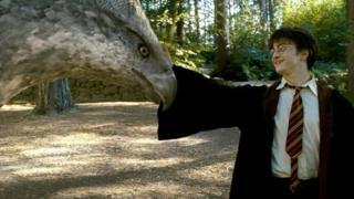 Harry Potter y un hipogrifo
