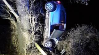 Car stuck in tree