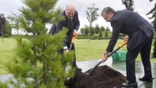 Президент Мирзиёев ва Президент Лукашенко кўчат ўтқазмоқдалар