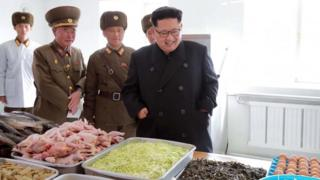 A picture released by North Korea's official Korean Central News Agency (KCNA) on 4 November, 2016 shows Kim Jong-un inspecting a special operation battalion of the Korean People's Army