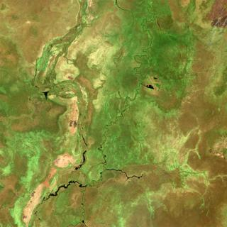Climate change: Methane pulse detected from South Sudan wetlands