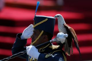 An Air Force soldier marches with an eagle on his shoulder, the symbol of Sri Lanka's Air Force, during the country's 69th Independence day celebrations in Colombo
