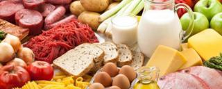 آیا شخص میتواند با خوردن تنها یک نوع غذا زنده بماند؟