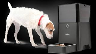 Petnet feeder