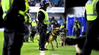A police officer with a dog at The Den