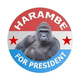 Harambe for President badge
