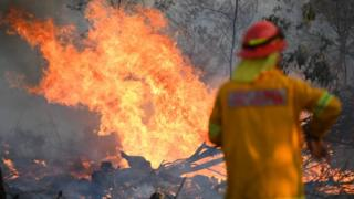 A firefighter works to contain a bushfire near Glen Innes, New South Wales, Australia, 10 November 2019