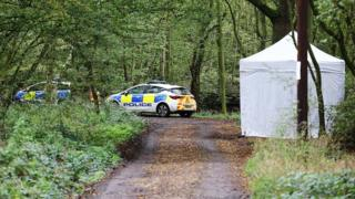 Police cars and a tent in woodland
