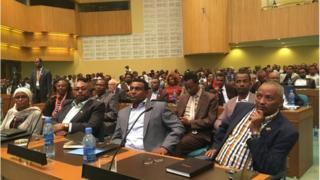 Hayyoonni Oromoo dhimma siyaas-dinagdee uumatichaarratti galma UNECA keessatti
