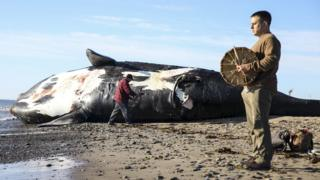 A ceremony is held by the carcass of Wolverine, a North Atlantic right whale, prior to its necropsy.