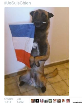 Tweet showing dog with French flag