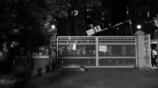 A black and white photograph of the gate to her apartment