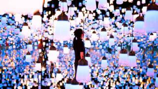 the stunning artworks made of light