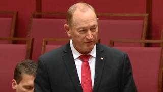 Senator Fraser Anning speaking in the Senate