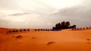 沙漠,自然,世界,撒哈拉