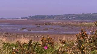 The Burry Inlet, near Llanelli