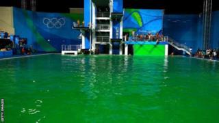 Вода в бассейне позеленела всего за одну ночь