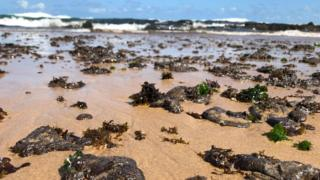 Oil blobs are seen on the sand of the Pituba beach located in the city of Salvador, Bahia state
